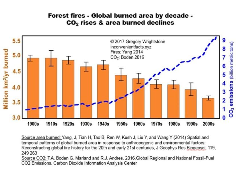 Skogsbränder globalt